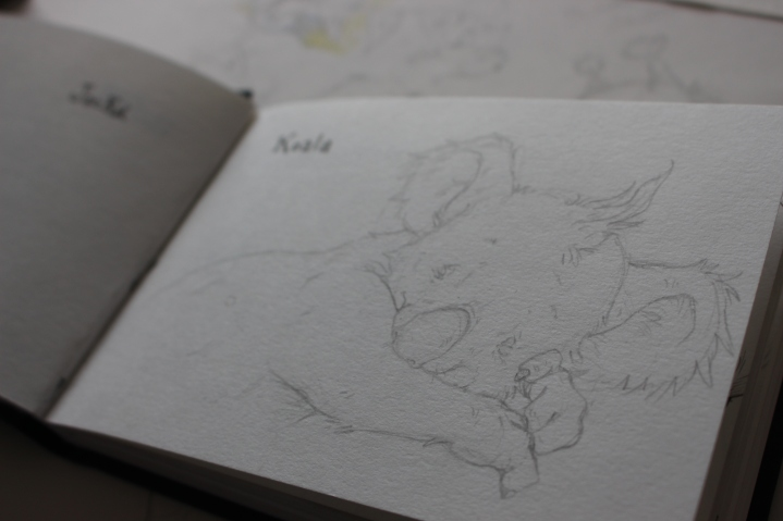 Koala Sketchbook