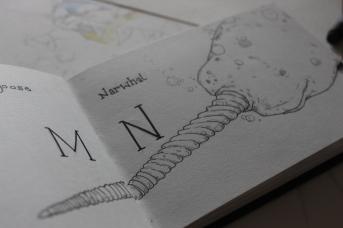 Narwhal Sketchbook