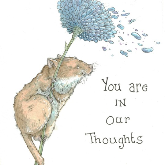 """""""You are in Our Thoughts"""" Dormouse"""